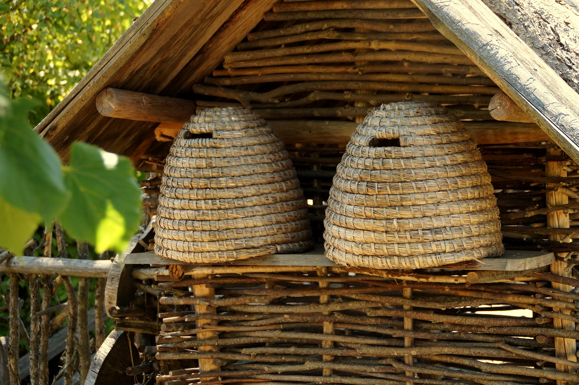 Ruches traditionnelles et ruches à cadres
