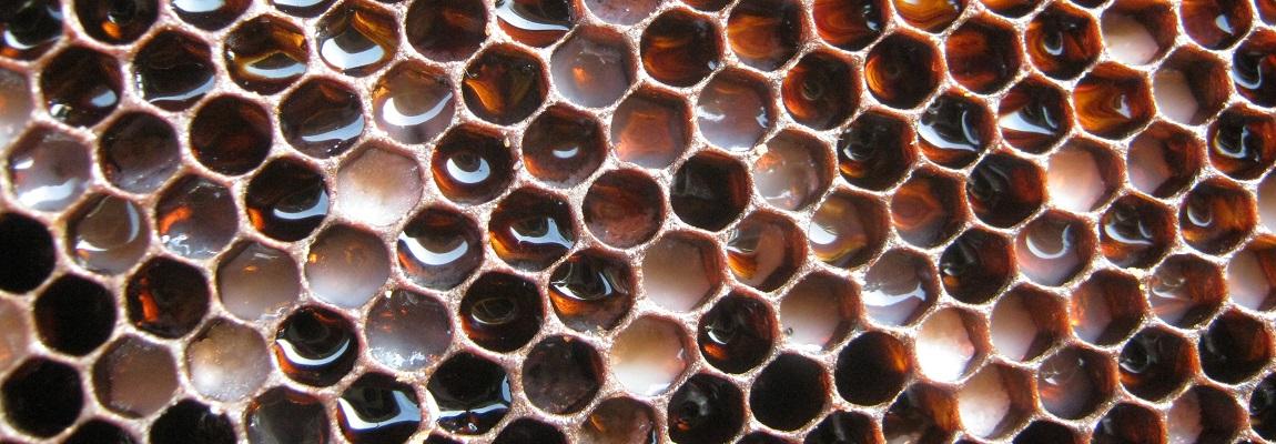 Comment utiliser le filtre à miel ?