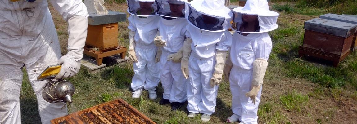 La réglementation apicole