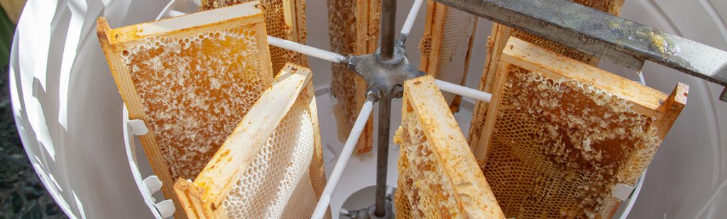 5 équipements indispensables de la miellerie